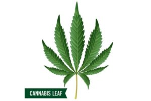 Cannabis Act Receives First Reading